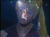 (SeraMyu) Seiya & Usagi - I miss you